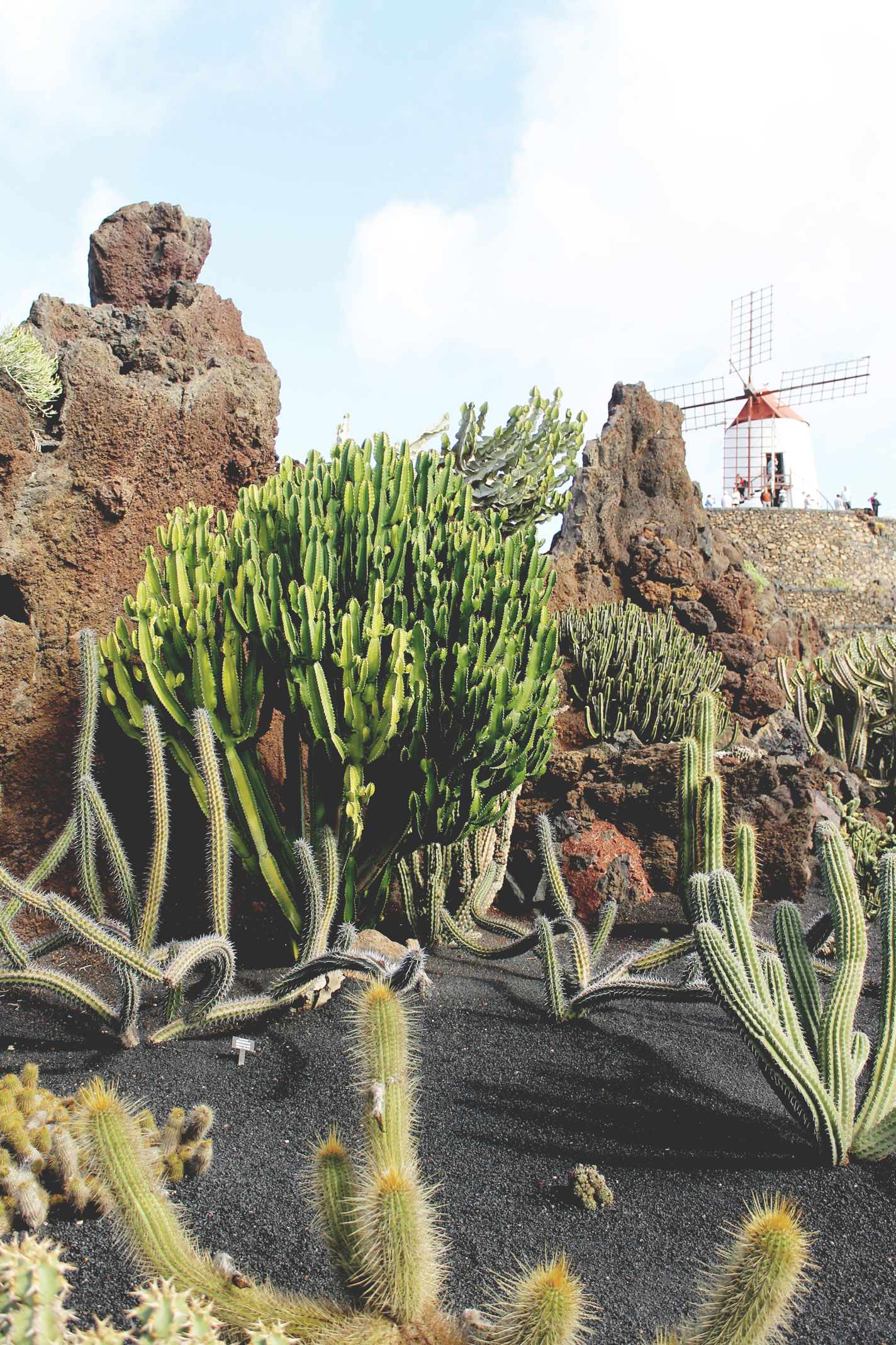 Lanzarote grand tour in the canary islands styleat30 for Jardin de cactus lanzarote